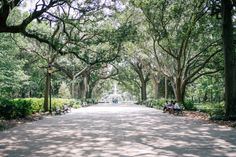 Gal Meets Glam - 2016 July 08 - A Day in Savannah - Location: Savannah, GA - TO VISIT: Forsyth Park / Parking on Bull Street and walking along.  Found Monterey Square + Pulaski Monument.  Also near the Mercer Williams House (museum)