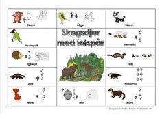Pratkarta-Skogsdjur med fotspår