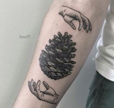 Tattoo of hands and pine cone by Johnny Bravo