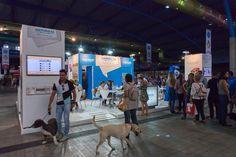 4º Salón del Animal de Compañía, Mi Mascota | 17 y 18 de octubre en el Palacio de Ferias y Congresos de Málaga (Fycma) | www.feriamimascota.com
