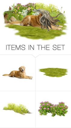 """Cthulhu's Dog"" by sh0shan ❤ liked on Polyvore featuring art"