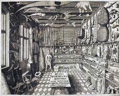 Cabinet of Curiosities - Ole Worm