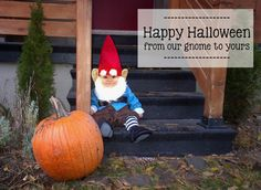 Harlow & Thistle: Family Baby Costume - Amazing Race & Travelocity Gnome Halloween Costume