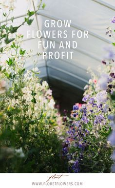 Floret shows you step by step how to build a vibrant flower farm business on two acres or less.