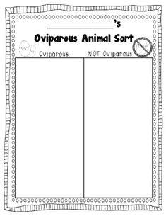 Oviparous Animal Sort {FREEBIE}