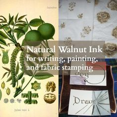 Natural dye ink for fabric stamping natural dye ink (Part 2)  here First, if you are allergic to walnuts, don't try this.  The nut proteins are released in the air during the simmering process.  Oak galls can also be used for ink and in fact are the traditional black ink for scribes and calligraphers.  Oak …