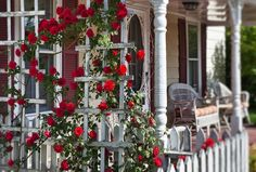 How to Accent Your Landscape With Climbing Roses