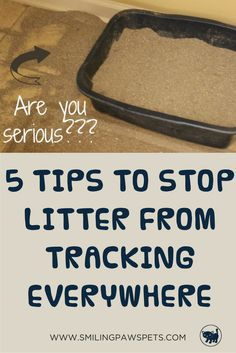Awesome and simple tips on how you can eliminate litter being scattered all over your home