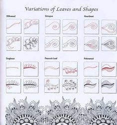 Zentangle Patterns | Zentangle Tutorials / Zen Mandalas