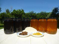 Κατά τους καλοκαιρινούς μήνες, στα Όρη του Βάλτου στη νότια Πίνδο και σε υψόμετρο 600 μέτρων, συλλέγουμε το μέλι καστανιάς και βελανιδιάς (δασόμελο).