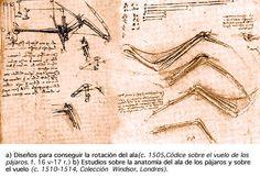 Diversos inventos voladores de Leonardo Da Vinci
