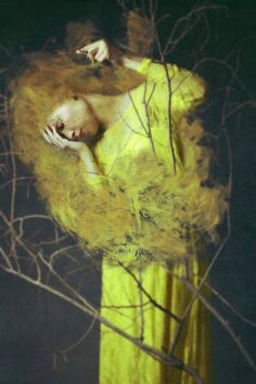 Of Desolate Amber © Josephine Cardin Photography