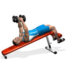 DECLINE DUMBBELL FLYES INVOLVED MUSCLES DURING THE TRAINING CHEST