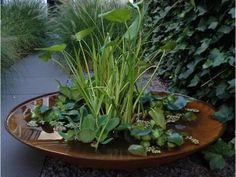 Vijverschaal Cortenstaal, Snel en direct een mini vijver in uw tuin? Kies dan voor een complete vijverschaal van cortenstaal. Dit is de waterschaal voorzien van