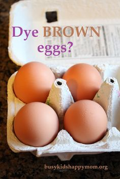 Can You Dye Brown Eggs?