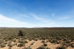 Green and Cold - The view from The Sutherland Observatory SALT Green and Cold - Sutherland is a town with about 2,841 inhabitants in the Northern Cape province of South Africa. It lies in the western Roggeveld Mountains in the Karoo