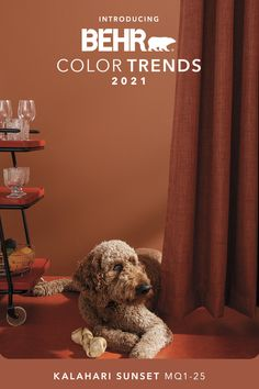 Relaxation, now available in a ravishing red-orange.  Explore Kalahari Sunset and the rest of our Color Trends 2021 Palette, inspired by the pursuit of elevated comfort at home. Home Wall Colour, Wall Colors, House Colors, Orange Paint Colors, Palette Wall, Behr Colors, Trending Paint Colors, Favorite Paint Colors, Rustic Farmhouse Decor