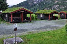 http://www.architekturakrajobrazu.info/images/stories/BartoszPalewski/norwegia/NorweigenGreenRoofs4.jpg