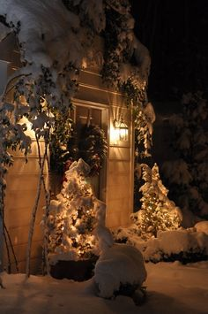 Snowy Christmas entry at night