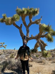 Check out my farorite things to do on a trip To Joshua Tree! Joshua Tree National Park, National Parks, Sustainability, Things To Do, Hiking, Adventure, Check, Things To Make, Walks