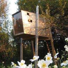 Treehouse located in Slovenia designed by Ravnikar Potokar - I would to convert this treehouse into my home office!