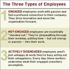 The 3 Types of EEs: Engaged, Not-engaged & Actively Disengaged