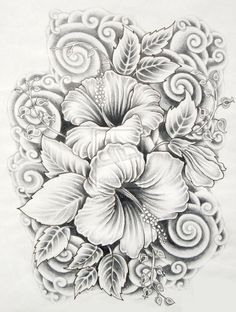 Image from http://webneel.com/daily/sites/default/files/images/daily/01-2014/14-drawings-of-flowers-hibiscus.preview.jpg.