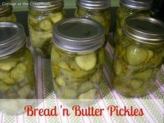 The BEST, never fail recipe for these great, traditional pickles!