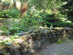 elämää ja elämyksiä: avoimet puutarhat, osa 3; täydellisen epätylsä puutarhamaailma