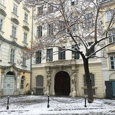 Winter in Europe. Vienna, Europe, Mansions, House Styles, Classic, Winter, Instagram, Home Decor, Mansion Houses