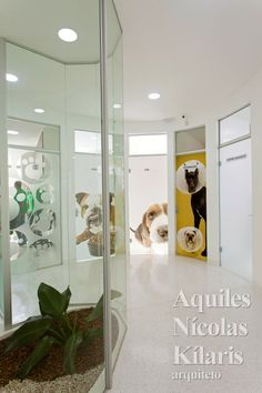 Arquiteto - Aquiles Nícolas Kílaris - Projetos Corporativos - Clínica Veterinária