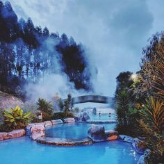 "Tom Huthwaite (@tomhuthwaite) on Instagram: ""Soaking in the soothing blue Wairakei geothermal pools ♨️😊♨️ #beautifulnz #beautifulworld…""#wairakeihotpoolsNZ"