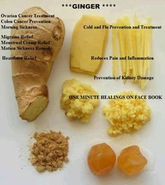 Ginger / Not so crazy about the taste of ginger, but still want the health benef. - Health and Wellness Ginger Uses, 3 Chakra, Treatment For Ovarian Cancer, Healthy Life, Healthy Eating, What Can I Eat, Ginger Cookies, Indonesian Food, Health And Wellbeing