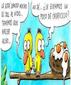 Le esta dando mucho el sol  #humor #chistes #gracioso #risa #unpocodehumor #Risadaria #ESHUMORcom #ChisteTwittero