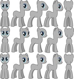 Mlp bases different views