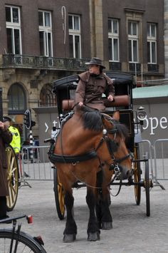 It would be cool to go for a ride in that cart! Big Horses, Pretty Horses, Blue Roan, Thoroughbred Horse, Countries To Visit, Clydesdale, World View, Amsterdam Netherlands, Draft Horses