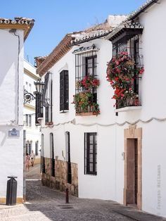 Plaza Mondragón in Ronda - Andalusia, Spain Flower Yellow, Bright Flowers, The Places Youll Go, Places To Go, Ronda Malaga, Travel Around The World, Around The Worlds, Photos Voyages, Spain And Portugal