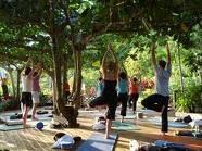 attend a yoga retreat... preferably in Bali :) ❀  Bali Floating Leaf Eco-Retreat ❀ http://balifloatingleaf.com ❀