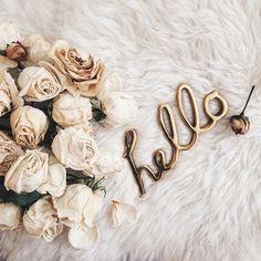 Imagem de hello, flowers, and rose
