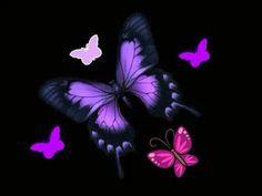 Bubbles Wallpaper, Wallpaper Backgrounds, Iphone Wallpapers, Purple Butterfly, Butterfly Flowers, Butterflies, Phone Screen Wallpaper, Butterfly Wallpaper, Mystic