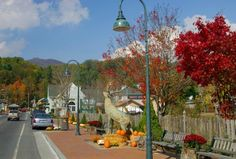 The High Country of North Carolina, also known as the High South, encompasses seven counties – Alleghany, Ashe, Avery, Mitchell,   Watauga, Wilkes and Yancey – yet most relocating to the area for a dose of peaceful High County living choose one of three B's:    Banner Elk, Blowing Rock or Boone. Find out more about this scenic mountain mecca and its charming towns here.  http://www.southeastdiscovery.com/areas/high-country-north-carolina