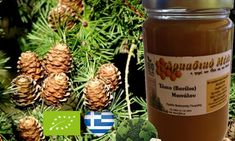 "BIOLOGICAL HONEY FIR VANILLA     in JAR SET OF 6 x 30 gr     HICH QUALITY ORGANIC HONEY         TOP GREEK EXCELLENT     HICH QUALITY BIO HONEY    * FIR VANILLA MAINALOU HONEY    JAR SET of 6 x 30 gr               Unprocessed natural product.    The uniqueness of this honey becomes distinct as it is very viscous,    with a whitish color and a distinct aroma,     thanks to its color being called ""Vanilla"".          Its nutritional and biological value is very high since it is honey with…"