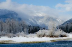 clark fork river montana - Google Search