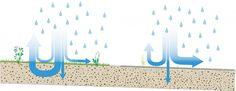paved and unpaved water infiltration Buffering and infiltration | Urban green-blue grids http://www.urbangreenbluegrids.com/water/buffering-and-infiltration/