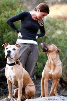 Louise, Larry  Joseph Pitbull trainer Villalobos Rescue Center - Pit Bulls and Parolees xo ___**Visit our website now!
