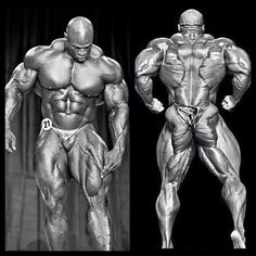 Ronnie Coleman 8 time Mr Olympia. From front to back the dude is just jacked!
