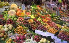 rasta diet - fruits and vegatable galore...the main staple of a rasta diet