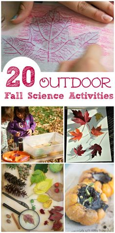 Awesome fall science activities the kids can do outside! Perfect for school projects too Easy Fall science activities for home or the classroom - experiments and STEM activities for preschool, kindergarten & elementary ages! Autumn Activities For Kids, Nature Activities, Stem Activities, Kids Outdoor Activities, Cabin Activities, Hands On Activities, Science Experiments Kids, Science For Kids, Fall Preschool Science