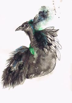 ¨Peacock¨ by Svitlana Baydak, via Behance