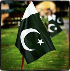 Ever green FLAG